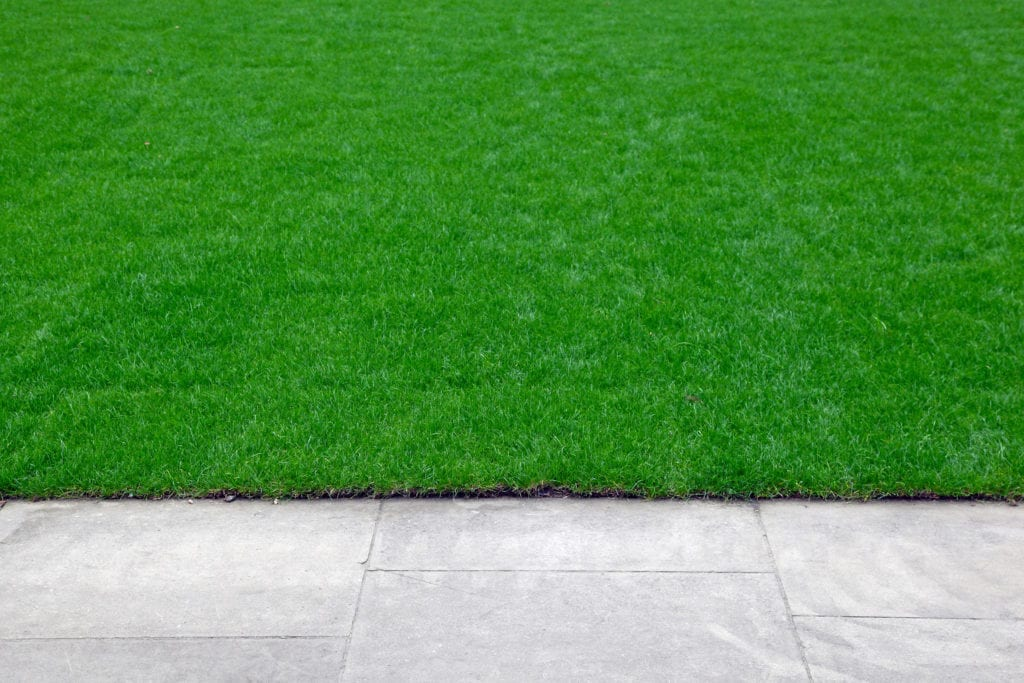 Rasenkante schneiden