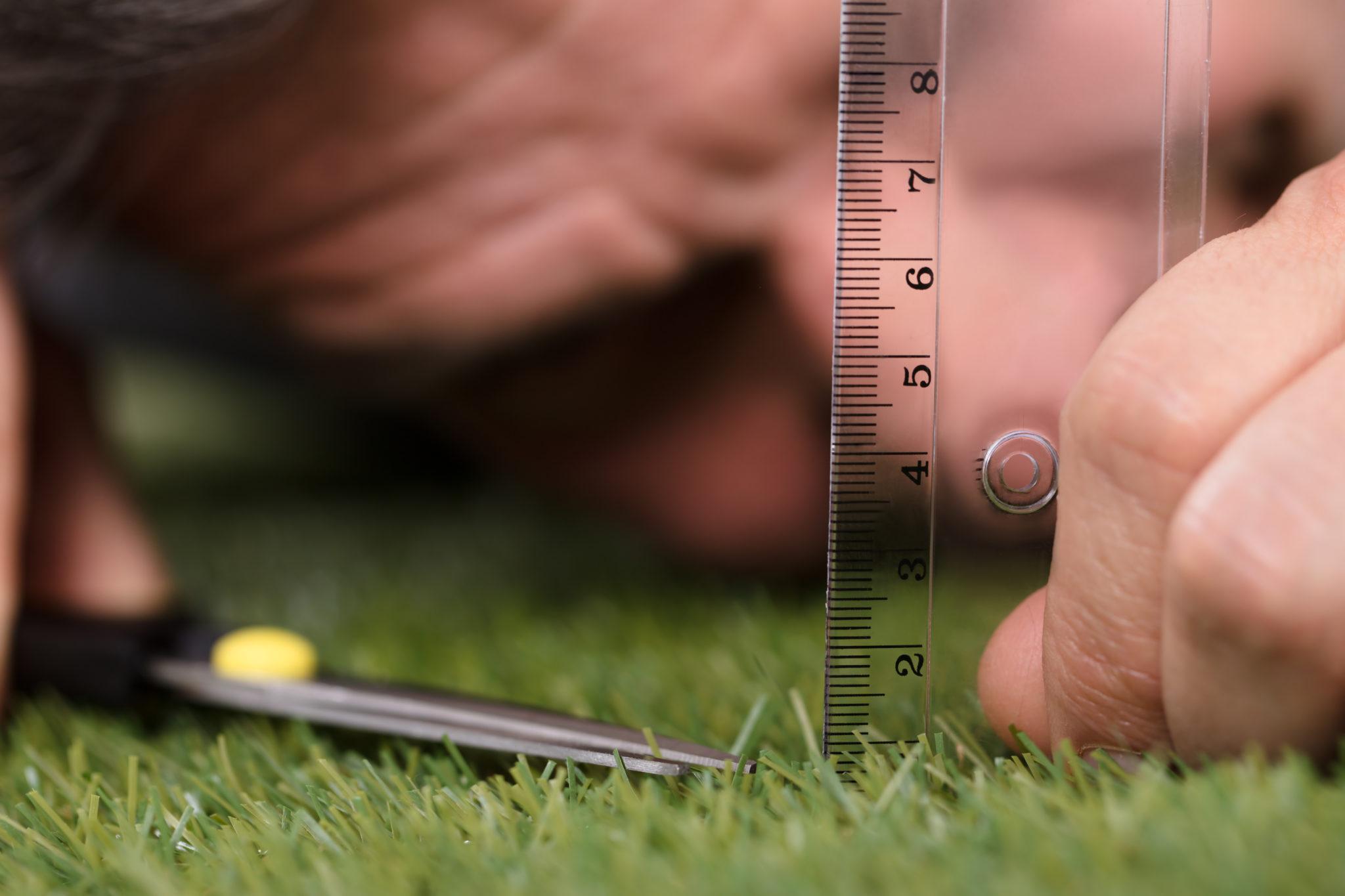 Rasen mähen richtige Länge