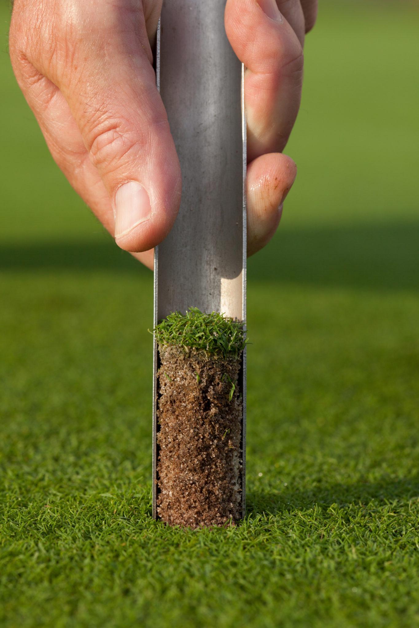 Rasen Bodenprobe