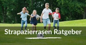 Read more about the article Strapazierrasen Ratgeber