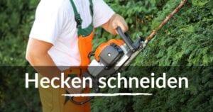 Read more about the article Hecken schneiden