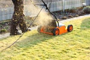 Rasen düngen, mähen und vertikutieren