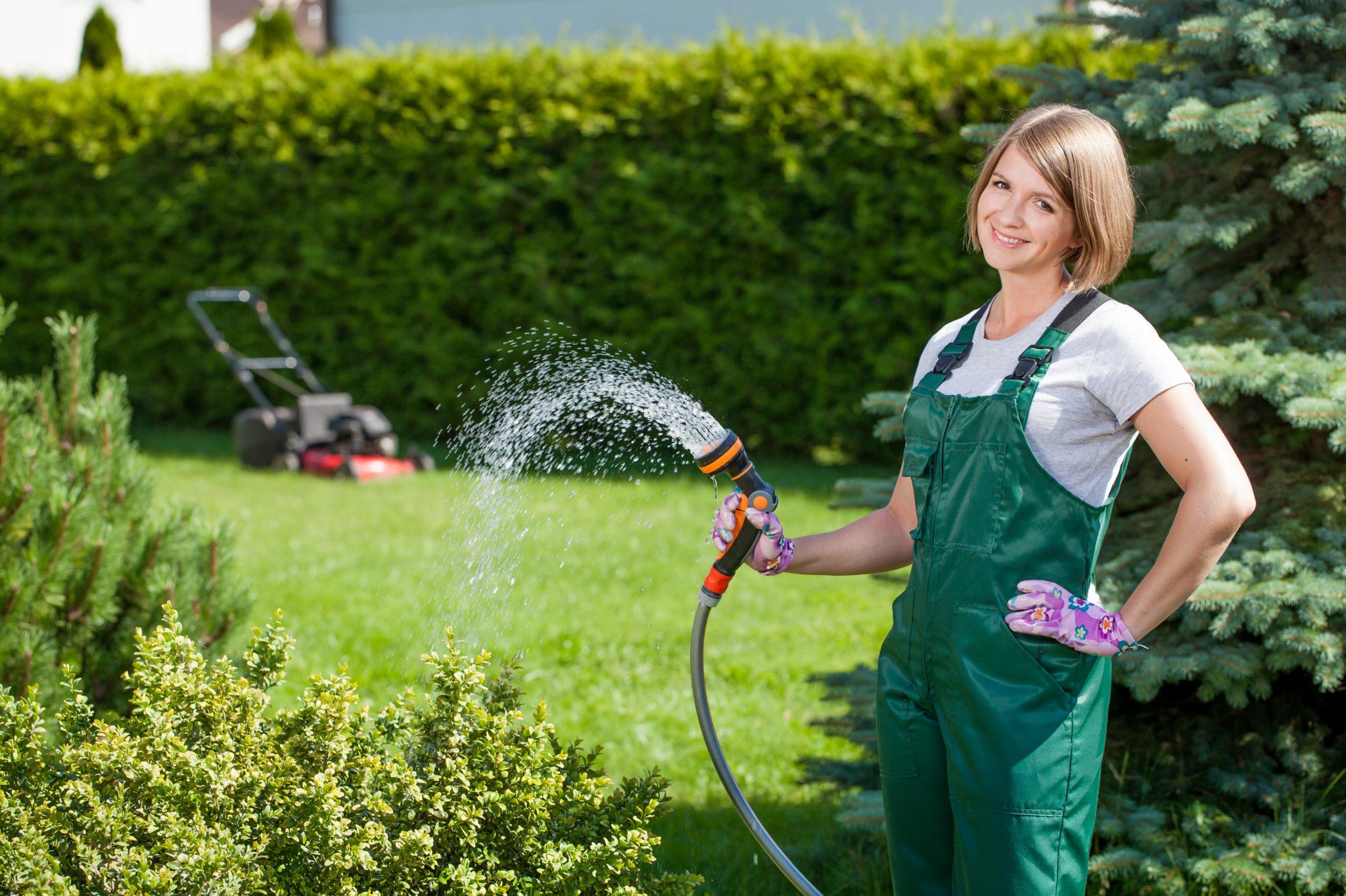 Rasen bewässern Regentonne